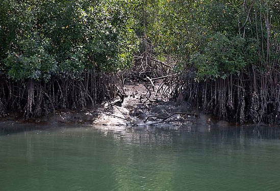 Bijagos Islands