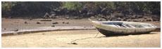 Franco's Beach