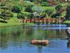 Durban - Japanese Gardens