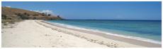 Dollar Beach