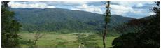 Vallée de Napu