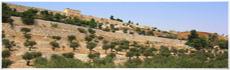 Valley of Josaphat