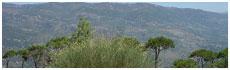 Mont Liban