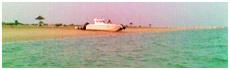 Al Safliya