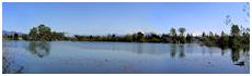Lac Mill
