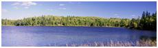 Caddy Lake