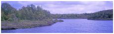Albro Lake