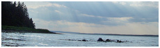 Janvrin Island