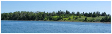 Lawlor Island