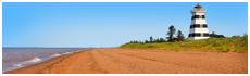 Cedar Dunes