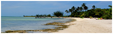 Tiamo Beach