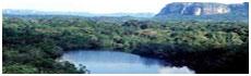 Sierra de Chiribiquete