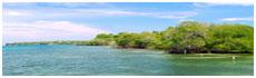 Islas Corales del Rosario