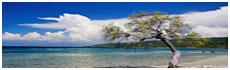 Île de la Gonâve