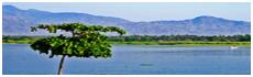 Lago Guerrero