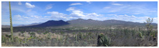 Vallée de Tehuacán