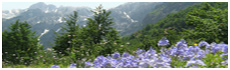 Vallée de Valbonë