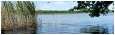 Lac de Virelles