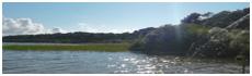 Cazaux Sanguinet Lake