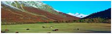 Guisane Valley