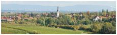 Kirchheim Weinstr.