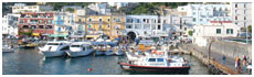 Capri(Na)
