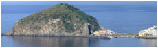 St Angelo From Ischia(Na)