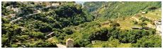 Valle de Dragone(Mo)