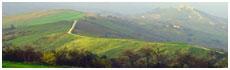 Valle de Rubicone(Fc)