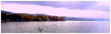 Lac de Bolsena(Vt)
