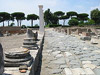 Roma(Rm) - Appia antica