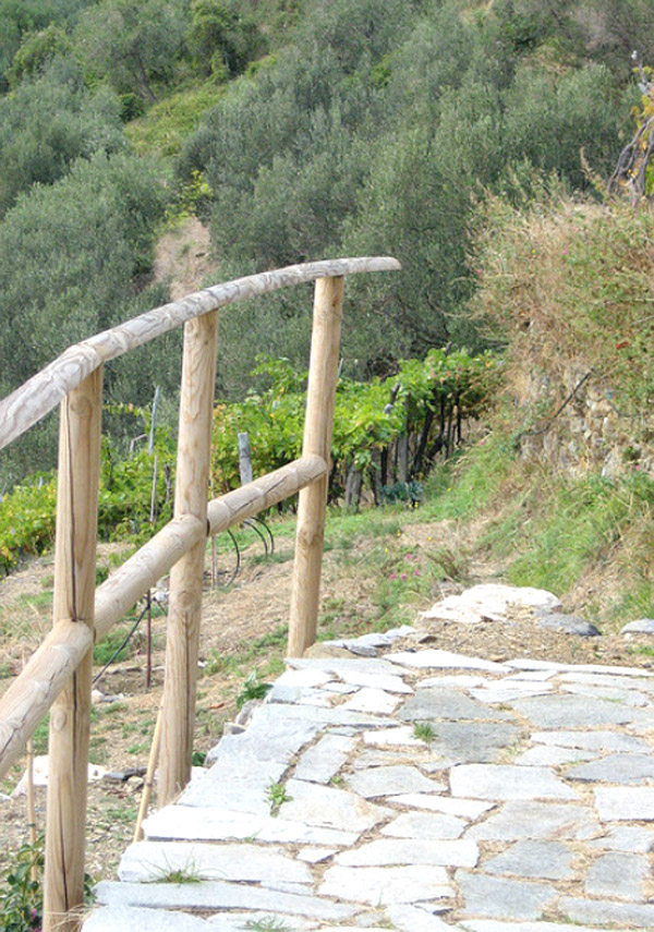 The Terraces de Cinque Terre