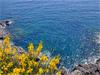 Cinque Terre(Sp) - Il Mare alle Cinque Terre