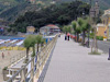 Moneglia(Ge) - Il Viale delle Palme (La Promenade des Palmiers)