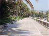 San Remo(Im) - El paseo marítimo de San Remo