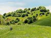 Val Trebbia(Pc) - Le parc naturel de Antola