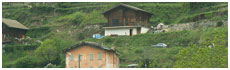 Borgo San Dalmazzo(Cn)