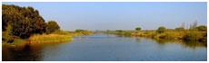 Parco Fluviale del Po(To)