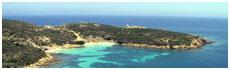 Isola dell'Asinara(Ss)