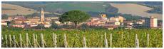 Casciana Terme(Pi)