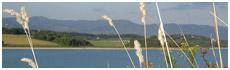 Lac de Bilancino(Fi)