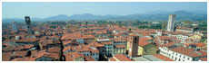 Lucca(Lu)