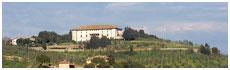 Medicea and Carmignano(Po)
