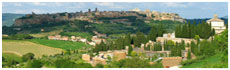Orvieto(Tr)