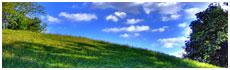 Euganean Hills(Pd)