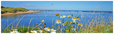 St Andrews Bay