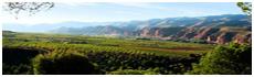 Vallée de Cidacos