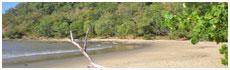 Buchan Point