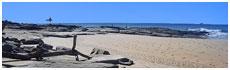 Buddina Beach