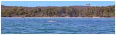 Boomer Bay